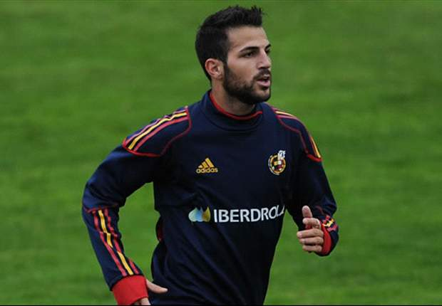 World Cup 2010: Spain midfielder Cesc Fabregas believes the United States will reach the semi-finals