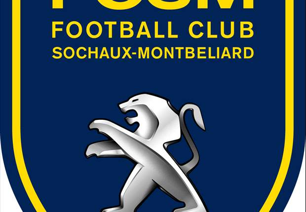 "Ligue 1, FCSM - Hély : ""On a souffert"""