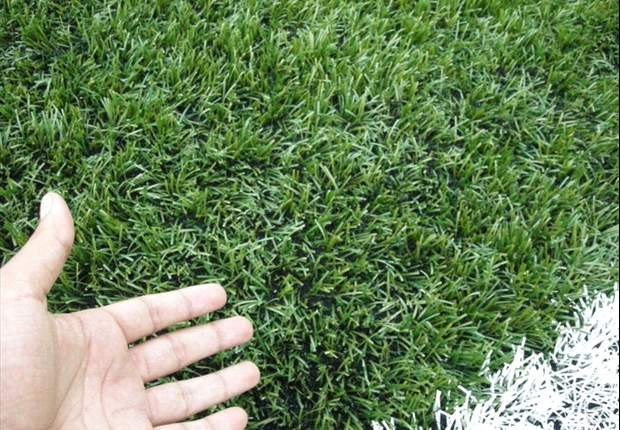 Two more venues could get artificial turf in Goa