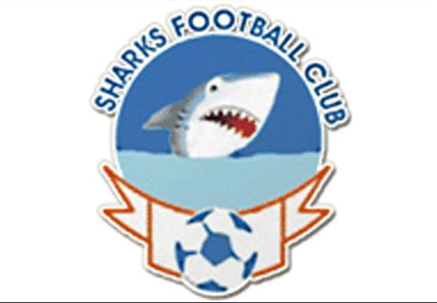 Okey Kpalukwu: Sharks getting set to win trophies next year