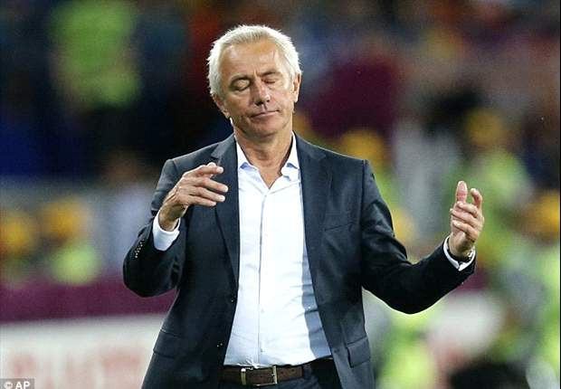 Netherlands to make decision on Van Marwijk's future before July 6