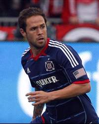 Daniel Paladini Player Profile