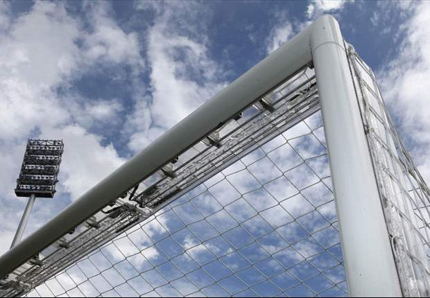 Poll of the Day: Are Fifa right to introduce goal-line technology?