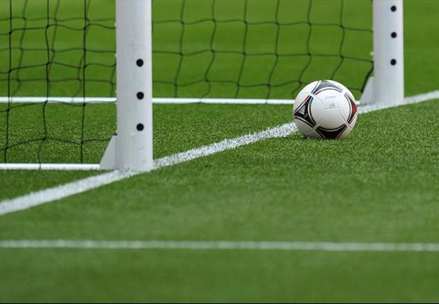 Fifa appoints goal-line technology provider