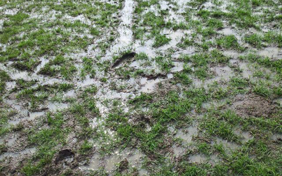 Pitch condition at JRD Tata Complex