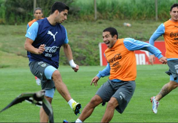 Walter Gargano: Uruguay clasificará al Mundial de Brasil