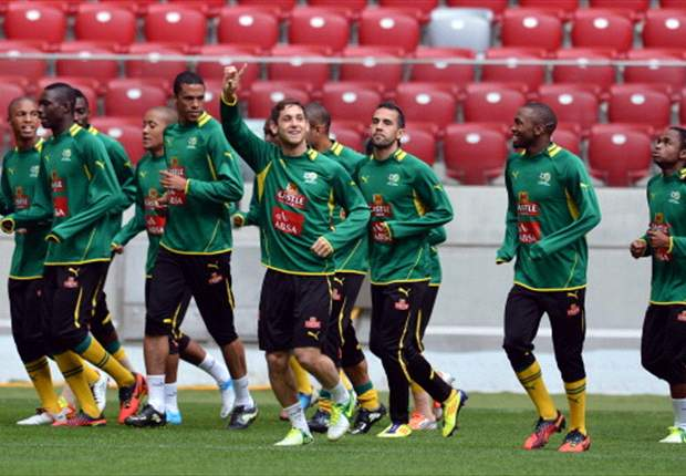 Bafana Bafana coach Igesund shows his hand for Afcon squad