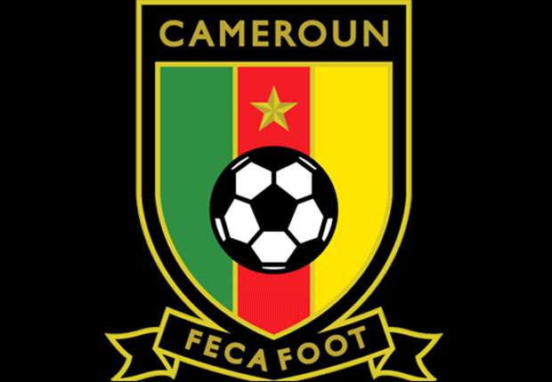 Cameroon in search of new coach