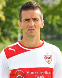 Vedad Ibisevic Player Profile