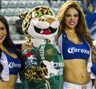 LIGA MX: Las chicas de los Cuartos de Final