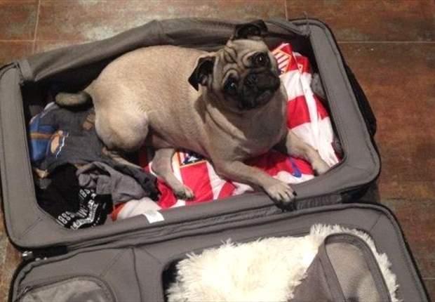 A Filipe Luis no le dejan hacer la maleta