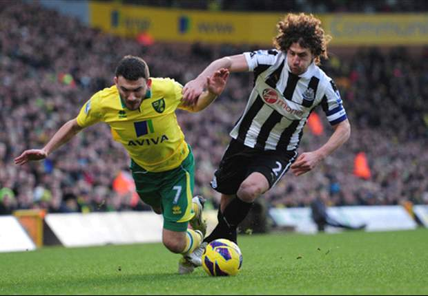 Coloccini's future is not distracting Newcastle, insists Cabaye