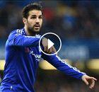 VÍDEO | El Chelsea despide a un empleado por increpar a Cesc