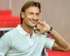 Former Lille boss Renard named new Morocco coach