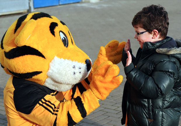 Hull City to be renamed Hull City Tigers