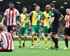 Referee cost Norwich in Sunderland defeat - Neil