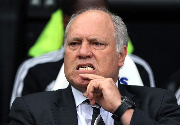 Fulham deserved a point at Newcastle - Jol