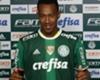 Fabrício Palmeiras 23052016
