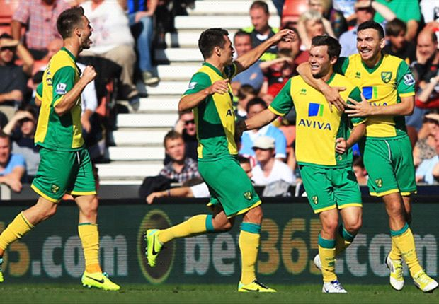 Stoke City 0-1 Norwich City: Howson strike gets Hughton back to winning ways
