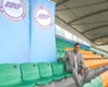 V. Sundramoorthy appointed Lions caretaker coach