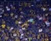 Fenerbahce fans 07272016