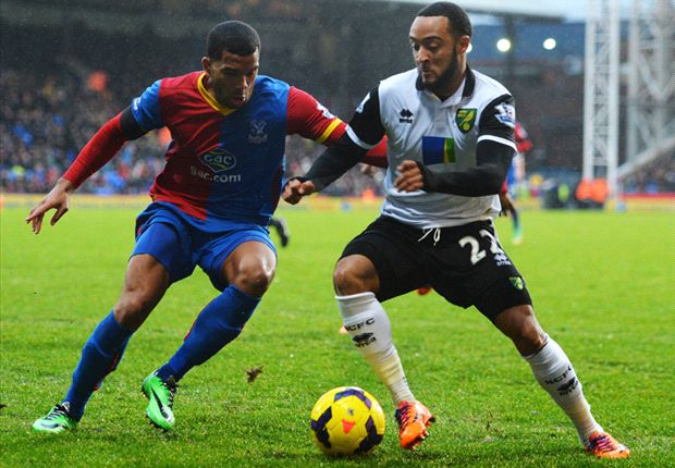 Crystal Palace 1-1 Norwich: Puncheon pounces to earn crucial point