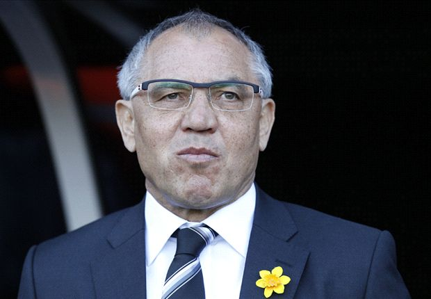 Magath looks to youth to shape Fulham future