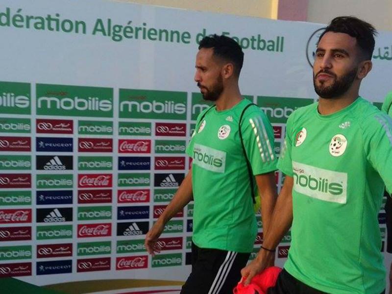 L'Algérie à pied d'œuvre pour le duel contre le Cameroun