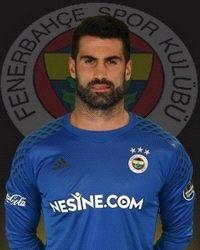 Volkan Demirel, Turkey International