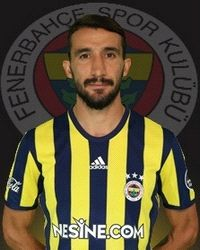 Mehmet Topal, Turkey Internasional