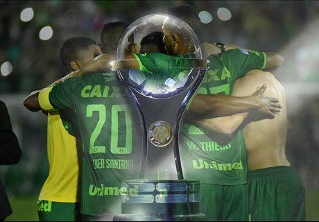 Ufficiale - La Sudamericana al Chape
