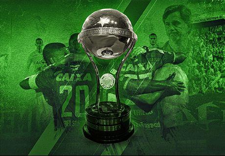 Chape named Sudamericana champs