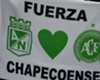 Amputee goalkeeper Follmann to be given job by Chapecoense