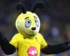 Bee in Allardyce's bonnet over mascot