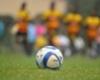 Ghana FA deny clash between Gyan and Ayew