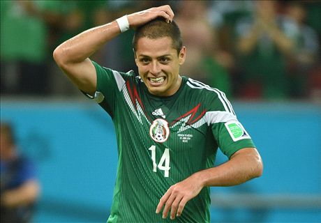 Vidic would be glad to have Chicharito