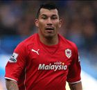Medel the right man for Inter - Thohir