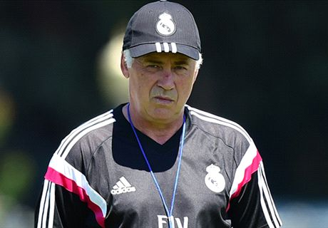 Ancelotti: LVG will be a Man Utd star