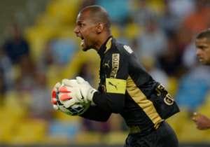 Jefferson tem sido um dos poucos pontos positivos do Botafogo em 2014