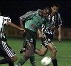 efemérides: Palmeiras e uma zebra chamada ASA