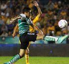 Liga Bancomer Mx: Tigres 1-1 Santos