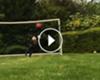 VÍDEO: ¡Vaya paradón! ¿El hijo de Claudio Bravo es mejor que su padre?