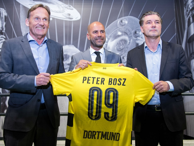 Dortmund in world's top 10 - Bosz relishing new challenge