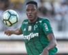 Palmeiras defender Yerry Mina
