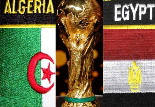 African Nations Cup: Algerian & Egyptian Fans Denied Access To Angola - Report