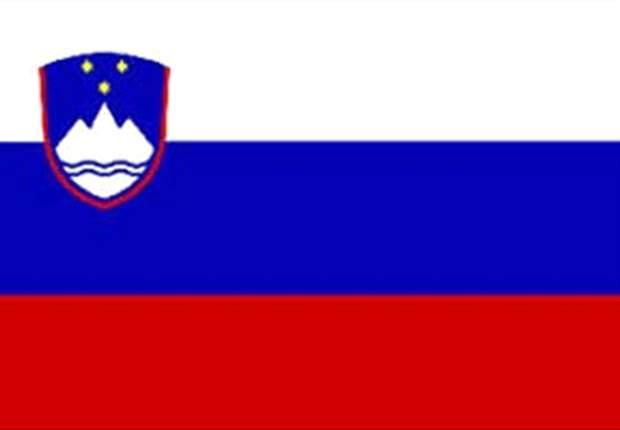 World Cup 2010: Matej Mavric: Slovenia Can Reach Last 16