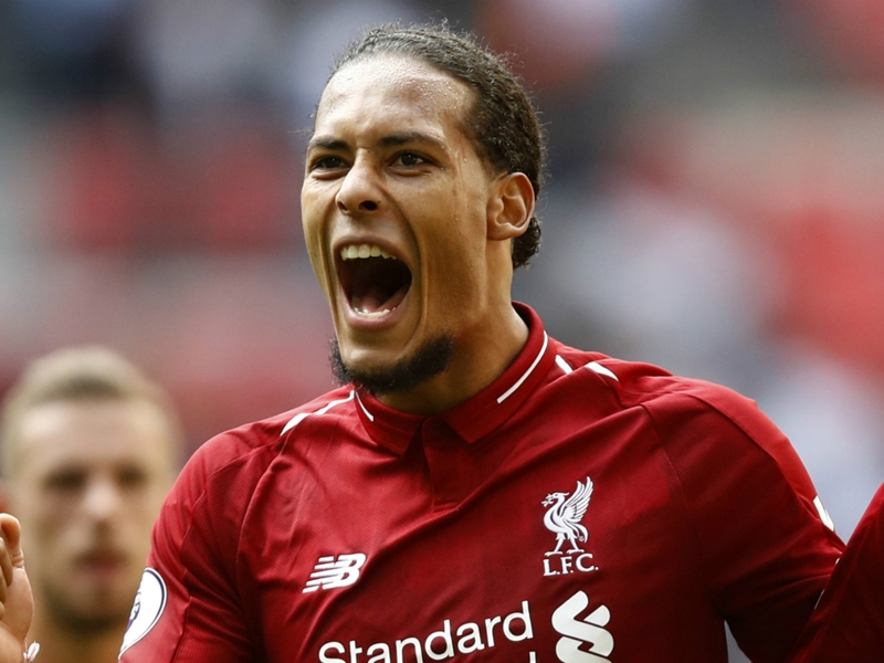 'Monster' Van Dijk could have ended up at West Brom - Fletcher