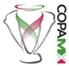 Quedaron definidos los seis Grupos de la Copa MX del Clausura 2015