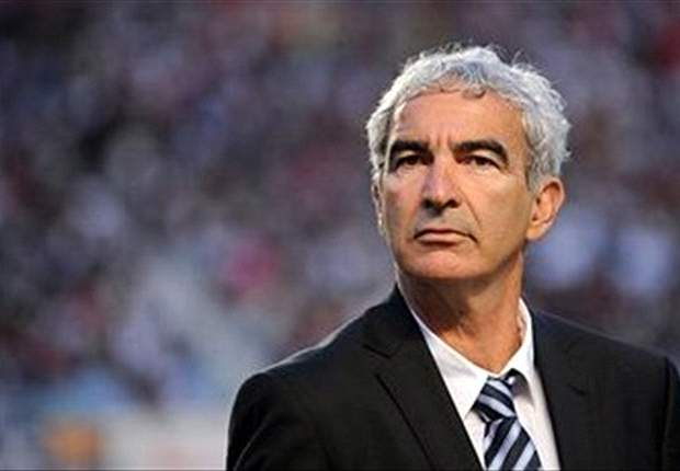 World Cup 2010: Raymond Domenech Admits Mistakes In France Squad Selection